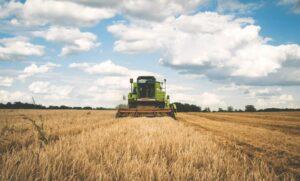 Agrarimmobilien als die etwas andere Art der Investition